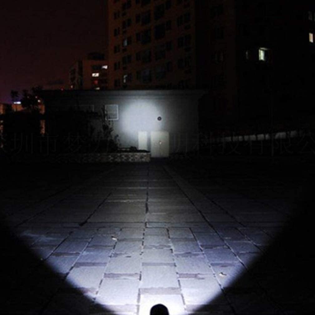 Mini penlight 5W Waterproof LED Flashlight Torch 5 Modes Lantern Portable Light