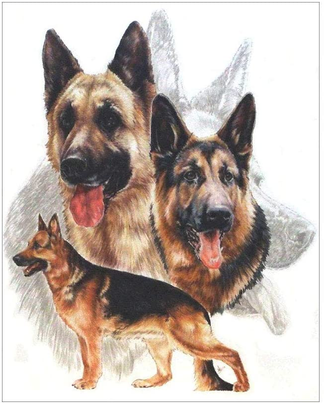 Diamond Painting,QINYUAN, Lovely Dog DIY 5D Full Drill Diamond Painting Embroidery Cross Stitch Kit Rhinestone Room Home Decor Craft