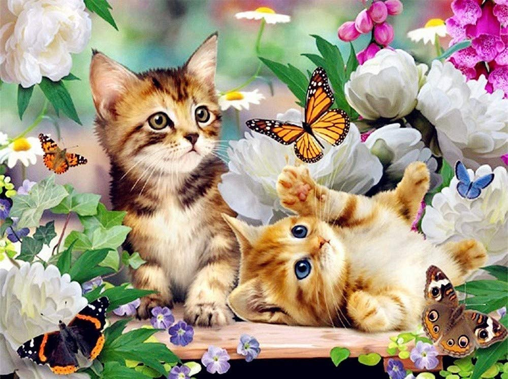 DCPPCPD 5D DIY Diamond Painting,Flower Animal cat Butterfly Kits for Adults Full Drill Crystal Rhinestone Embroidery Cross Stitch Arts Craft Canvas