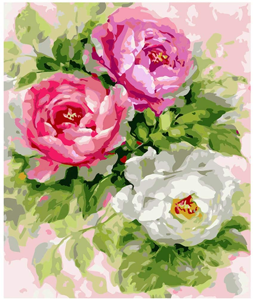 BERYART DIY Oil Painting Paint with Brushes Acrylics by Number Kits On Canvas by Hand Coloring Arts Crafts - Peony in Bloom 16 x 20 inch (Without Frame)