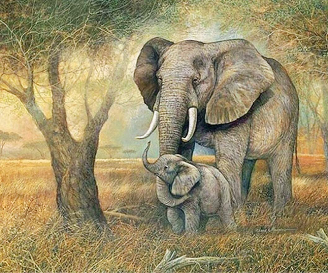 20x16in 5D Diamond Painting, Diamond Art Kits for Adults & Children, DIY Full Drill Crystal Embroidery Rhinestone Pictures Arts Craft for Home Wall Decoration(Elephants)