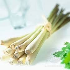 Lemongrass Fresh Component of Many Important Nutrients and Foods 100 G.