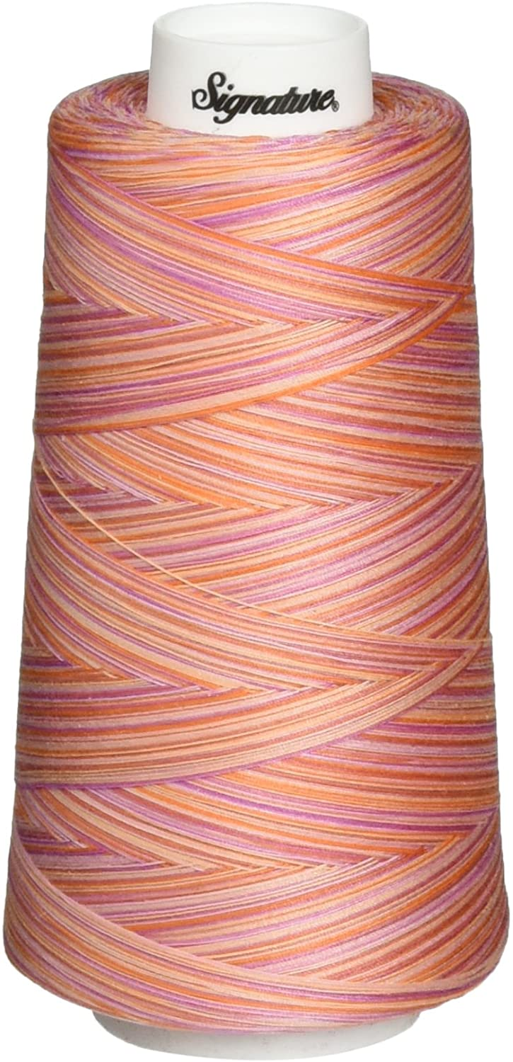Signature Cotton Quilting Thread, 3000 yd, Variegated Cotton Candy
