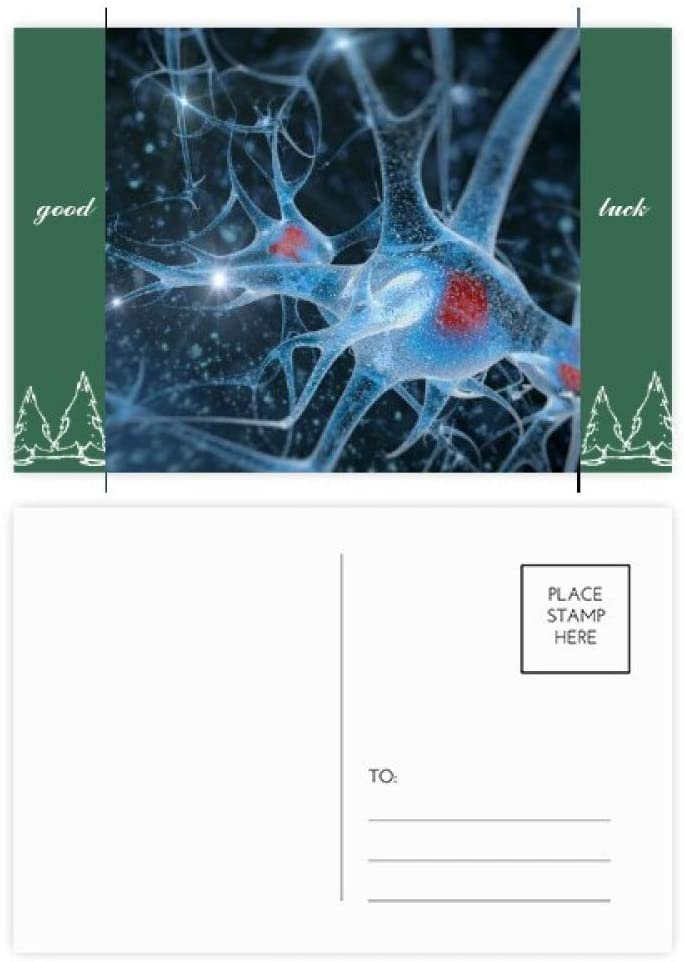 Brain Cell Picture Details Pattern Good Luck Postcard Set Card Mailing Side 20pcs