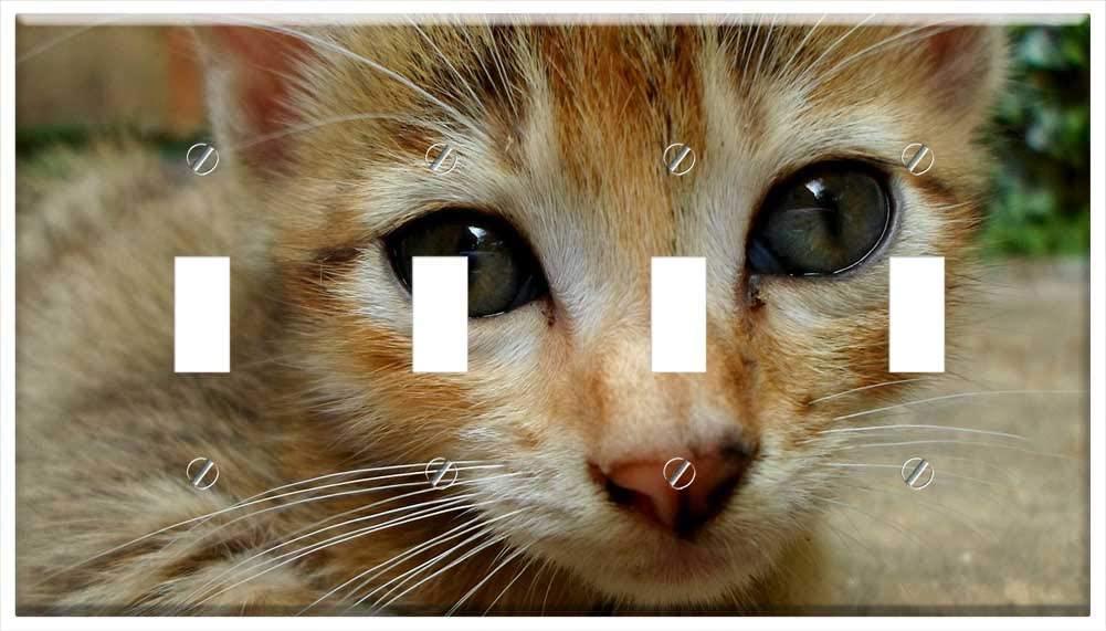 Switch Plate 4 Gang Toggle - Cat Cat Face Cat Eyes Feline Kitten Kitty Furry 1