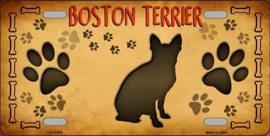 Smart Blonde Boston Terrier Novelty License Plate LP-11305