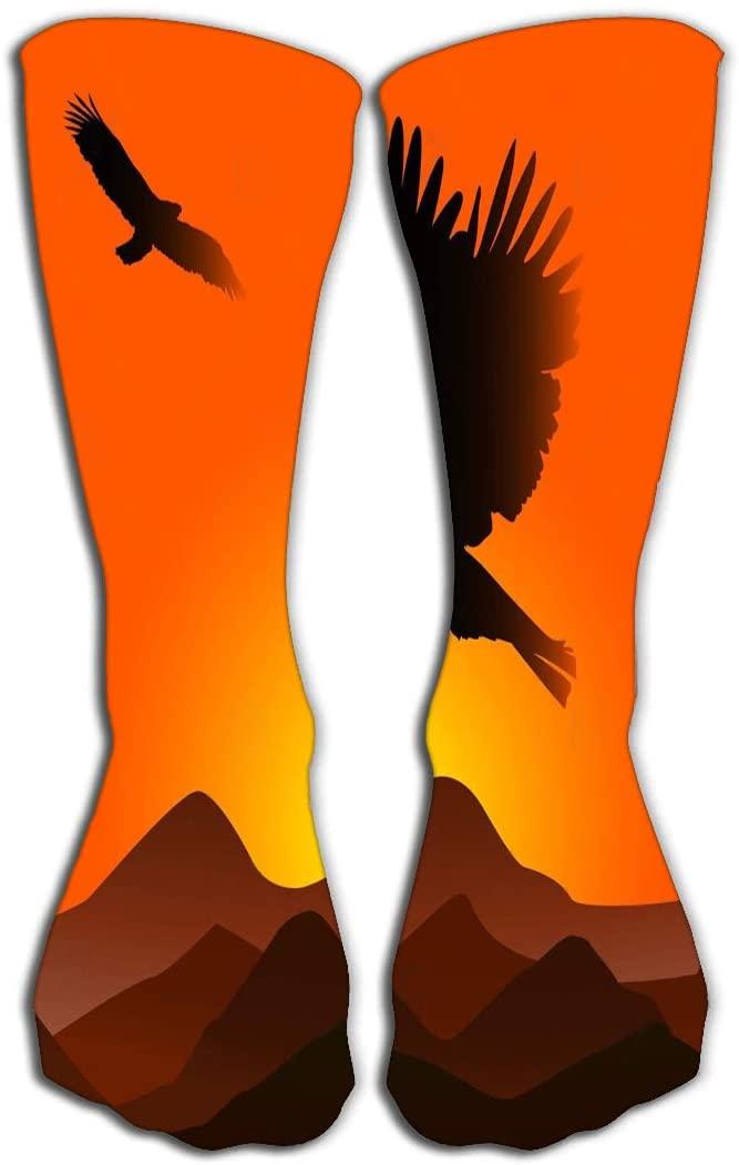 YILINGER Best Stockings for Running, Medical,19.7(50cm) Sunset Eagles Gorgeous