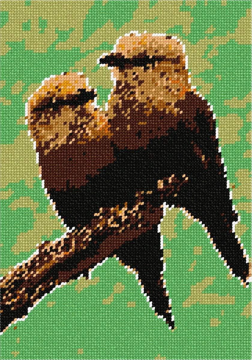 Pepita Birds Of A Feather Needlepoint Kit