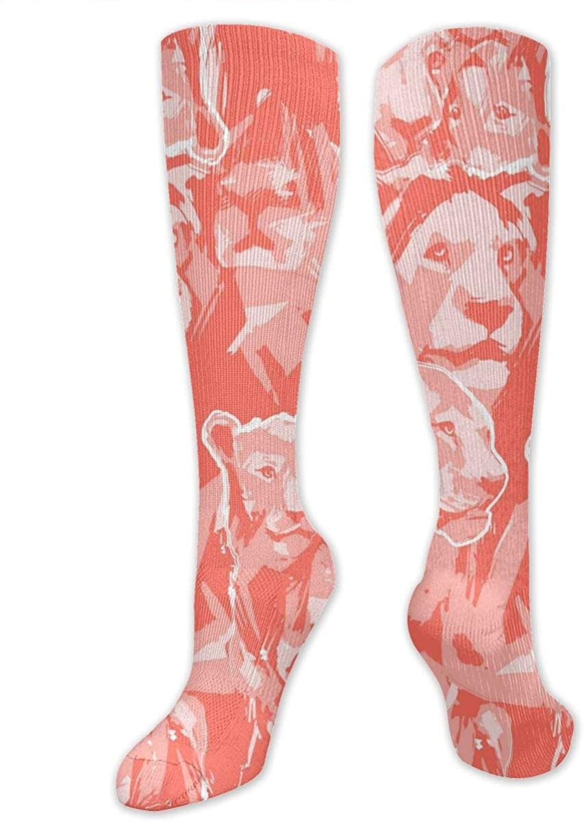 Men Women Knee High Socks Abstract Graphic Lion Of Pride Hiking Hose Stockings