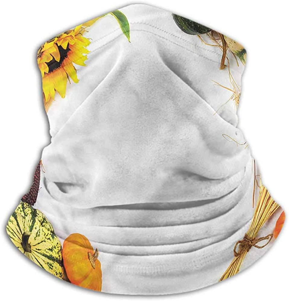 Seamless Face Bandana Thanksgiving Neck Gaiter Sunblock Face Scarf Agriculture Harvest 10 x 12 Inch