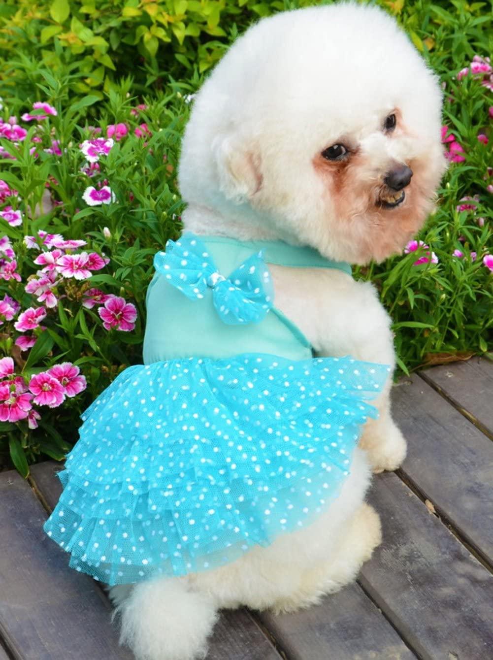 Small Pet Girl Dog Clothes Apparel Summer Princess Dress Chiffon dress