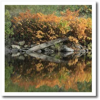 3dRose TDSwhite – Fall Seasonal Nature Photos - Pretty Autumn Colors Fall Lake Reflection - 8x8 Iron on Heat Transfer for White Material (ht_321848_1)