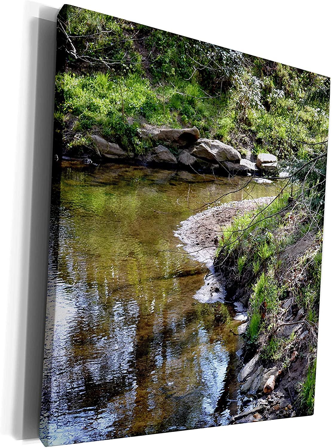 3dRose ET Photography - Nature Scenes - Beauty within a Creek A creek scene at the NC Botanical Gardens - Museum Grade Canvas Wrap (cw_127817_1)