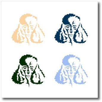 3dRose Gabriella-Quote - Image of Four Poodle Image - 6x6 Iron on Heat Transfer for White Material (ht_322130_2)