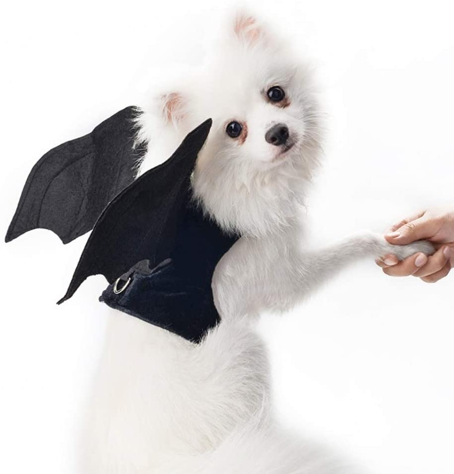 Stock Show Pet Halloween Bat Wings Costume Dog Cat Bat Wings Vest Harness Cool Fancy Party Halloween Dressup Costume Outfits Pet Clothes Accessory for Small Dog Cat, Black(No Leash Included)