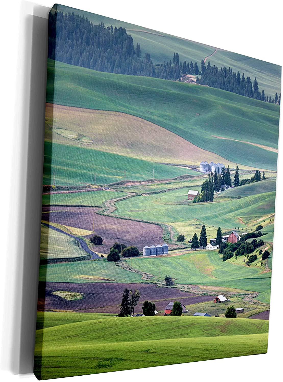 3dRose Danita Delimont - Agriculture - USA, Washington. Landscape of Palouse country and farms. - Museum Grade Canvas Wrap (cw_208471_1)