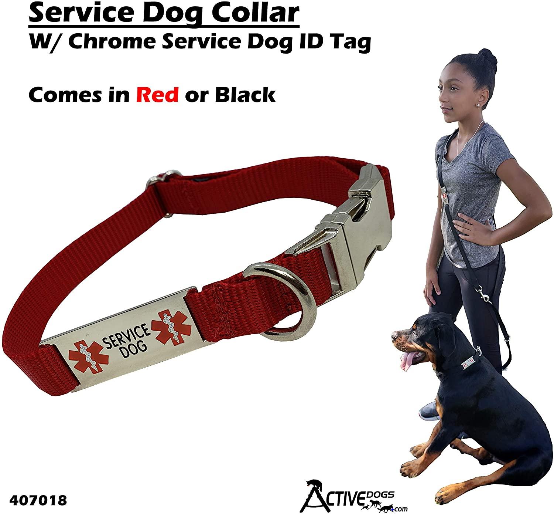 Activedogs Service Dog Collar W/Chrome Service Dog ID Tag