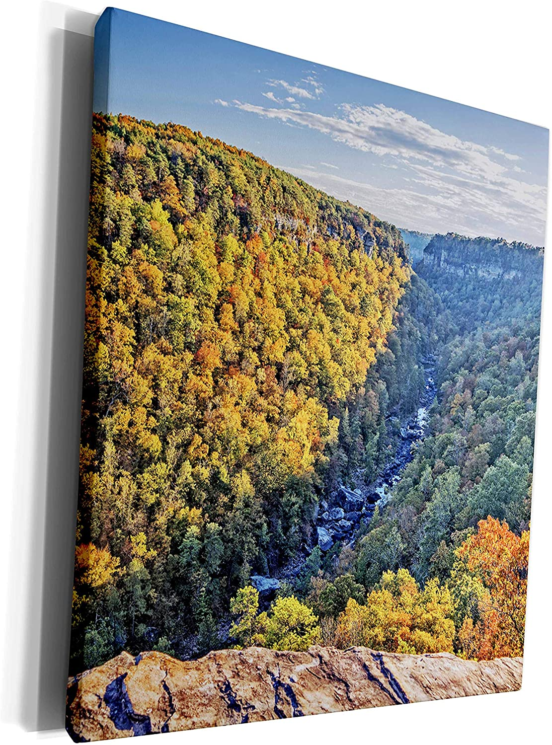 3dRose Boehm Photography Landscape - The Magnificent Little River Canyon National Preserve of Alabama - Museum Grade Canvas Wrap (cw_253208_1)