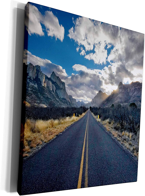 3dRose Danita Delimont - Highways - Portal Road, Portal, Arizona - Museum Grade Canvas Wrap (cw_229767_1)