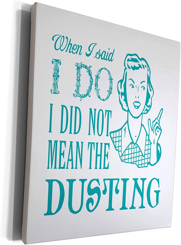 3dRose Russ Billington Designs - Funny Dusting Joke Design in Teal on White - Museum Grade Canvas Wrap (cw_262129_1)