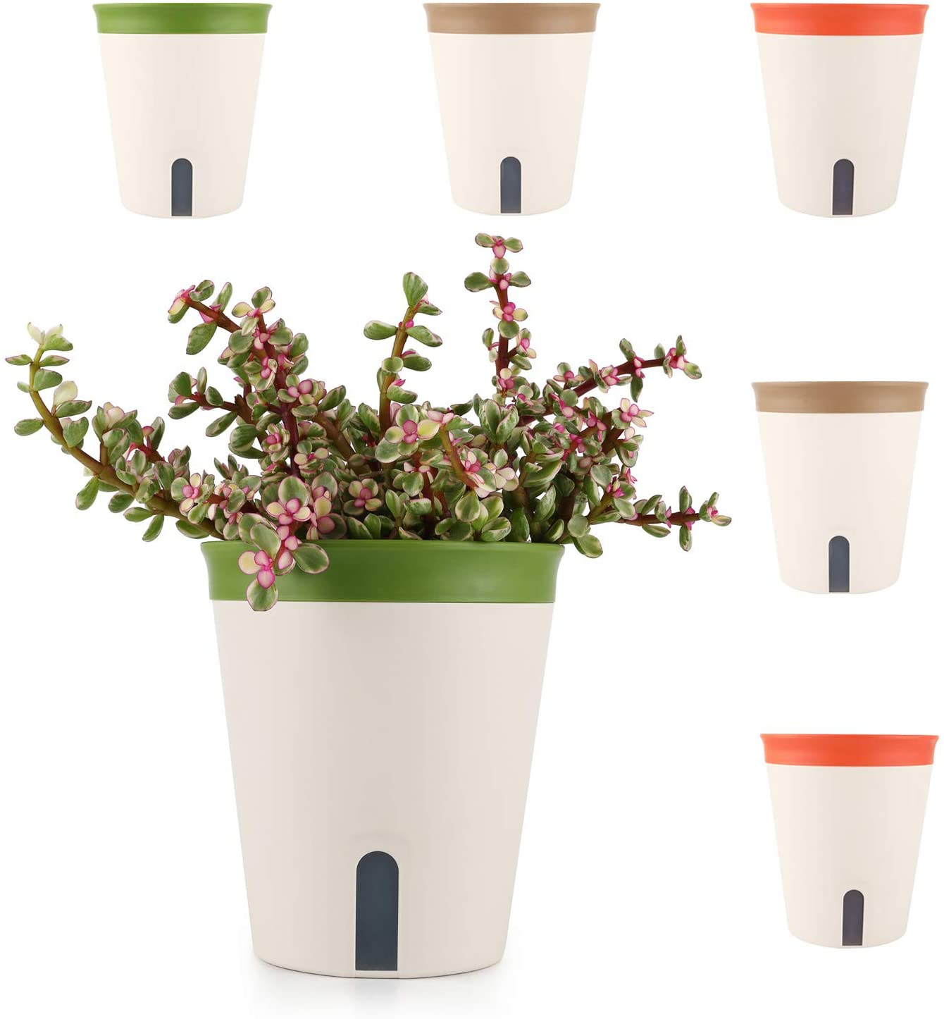 T4U Self Watering Planter Pot Round 5 Inch Multi Color Set of 6, Plastic Plant Pot with Visual Water Level Window Indoor Decorative Garden Flower Bonsai Pot for Aloe, Herb and Succulent Plants