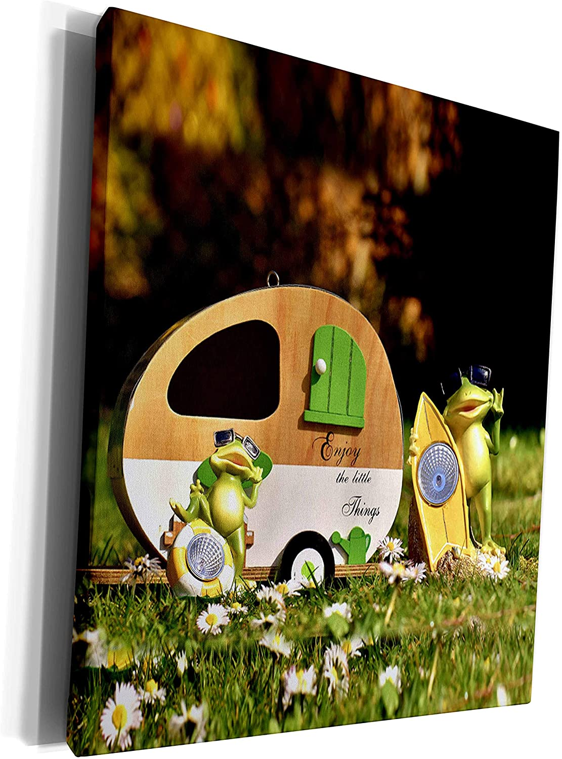 3dRose 2 Travel – Camping, Hiking, Biking Activities - Enjoy the Little Things Funny Frog Couple by Camper - Museum Grade Canvas Wrap (cw_311409_1)