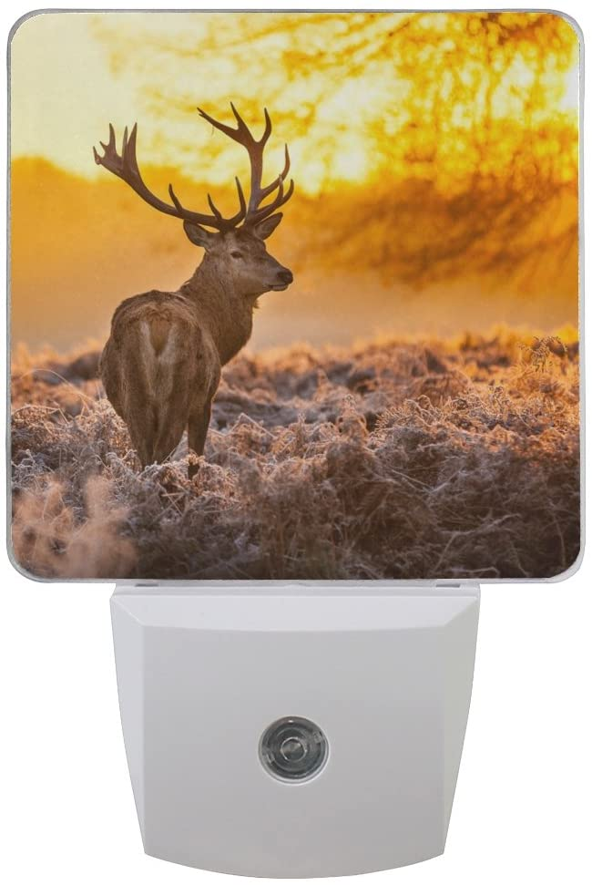 Naanle Set of 2 Antler Red Deer Morning Sun Auto Sensor LED Dusk to Dawn Night Light Plug in Indoor for Adults