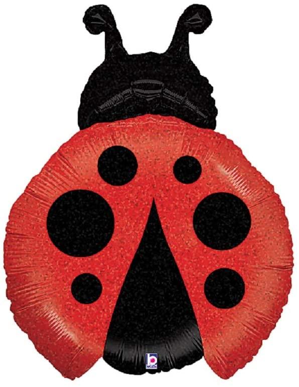 Little Ladybug 27