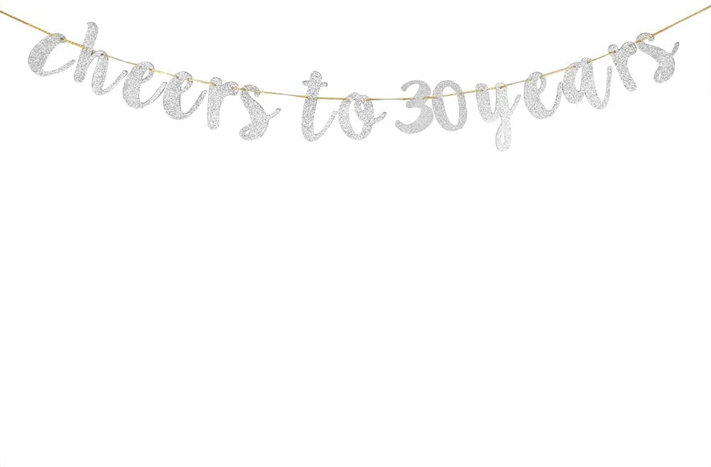 Glitter Silver Cheers to 30 Years Banner - 30th Birthday Sign Bunting 30th Marriage Anniversary Party Bunting Decoration