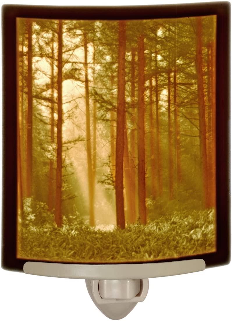 Woodland Sunbeams Colored Porcelain Lithophane Night Light
