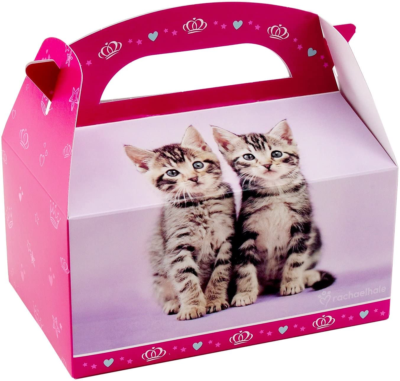 BirthdayExpress Rachael Hale Glamour Cats Party Supplies - Empty Favor Boxes (4)