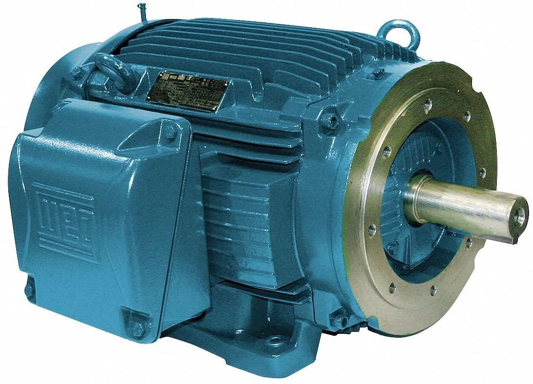 Weg Electric Motors WEG NEMA Premium Efficiency Motor, 01018ET3E215TC-W22, 10HP, 1800RPM, 208-230/460V, TEFC, 215TC, 3PH