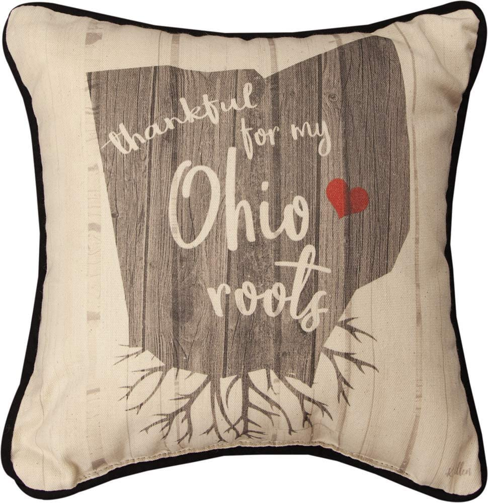 Manual Woodworkers SDTROH Thankful for My Roots Ohio Kal Throw Pillow, 12 inch, Multicolor