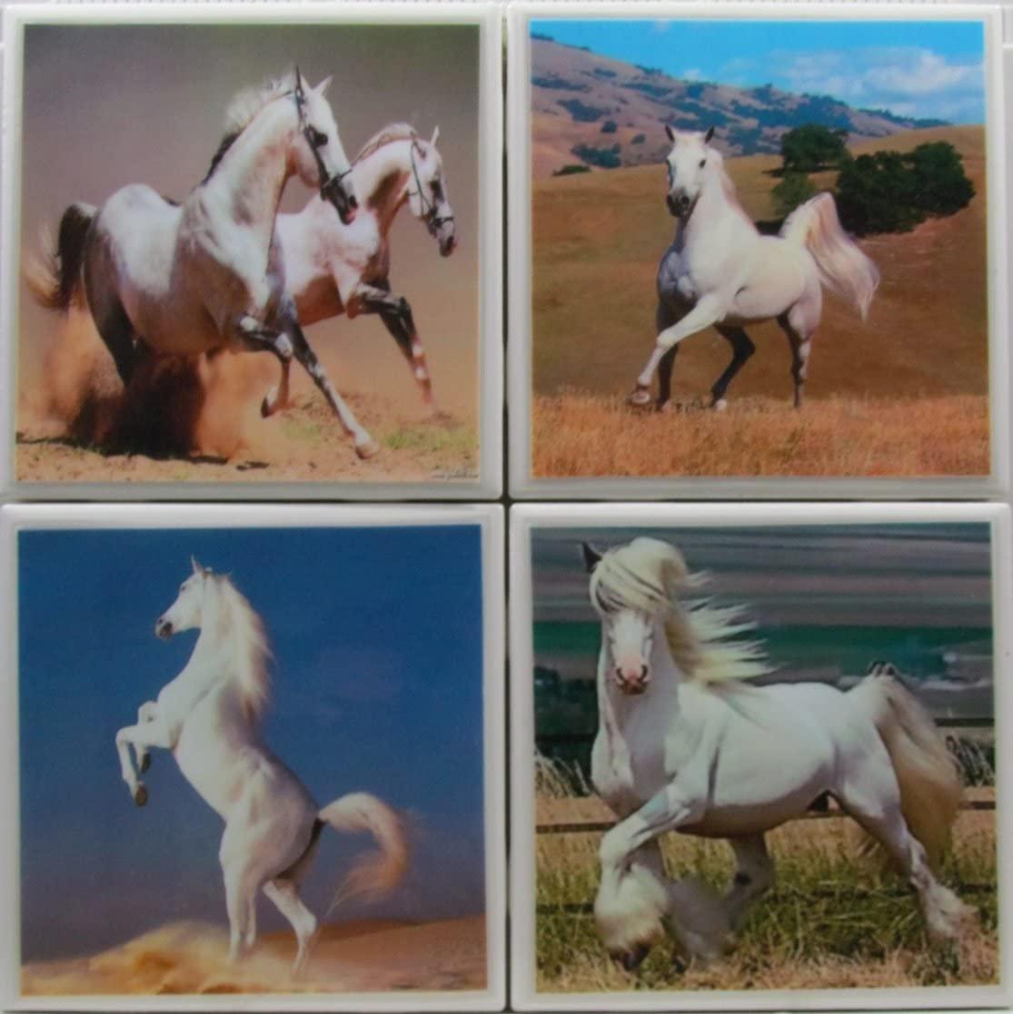 Personalized Coasters - Horses - Set of 4-4