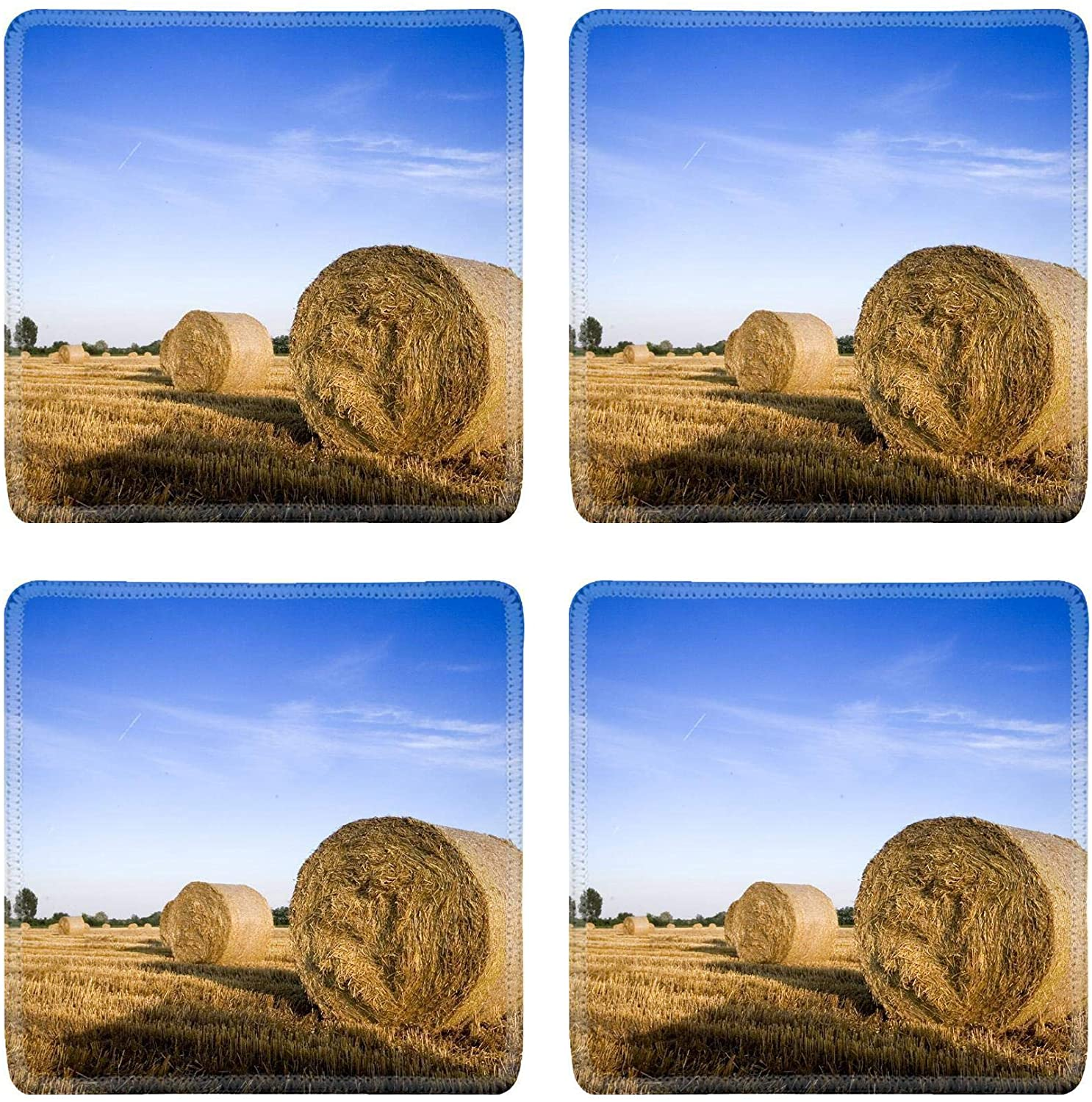 MSD Drink Coasters 4 Piece Set Image ID: 3244884 Field of gold and blue sky