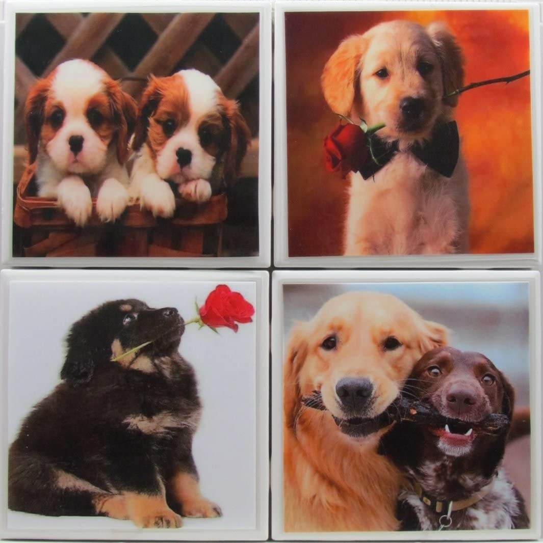 Personalized Coasters - Dogs - Set of 4-4