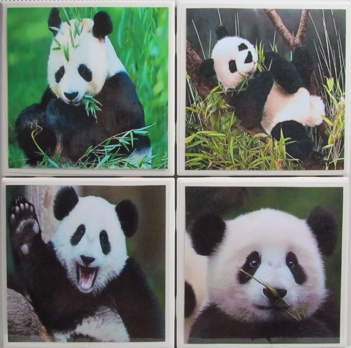 Personalized Coasters - Panda Bears - Set of 4-4