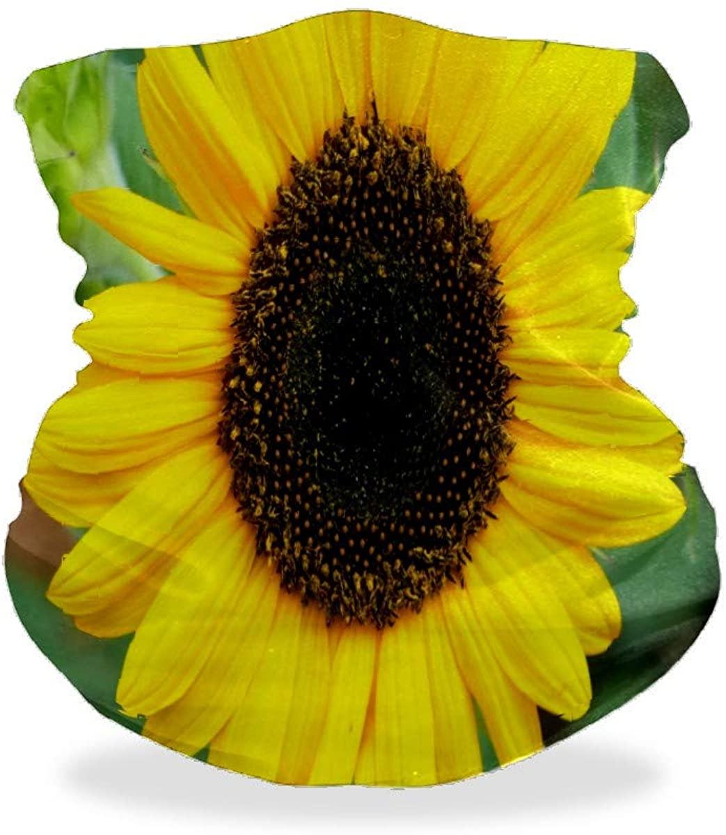Sunflower Flower Blossom Sun Bandana Face Mask for Dust Wind UV Sun Product Neck Gaiter Helmet Liner Headwear Balaclava Scarf Outdoors Mask for Women Men Adults Kids