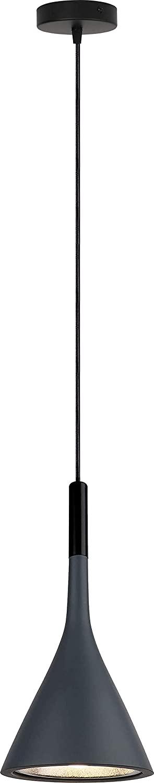 iYoee Modern LED Gray Resin Chandelier Pendant Light for Bedroom Bedside Reading Lamps Adjustable Cord Length for Kitchen Island Lights,Free 5W LED Bulb