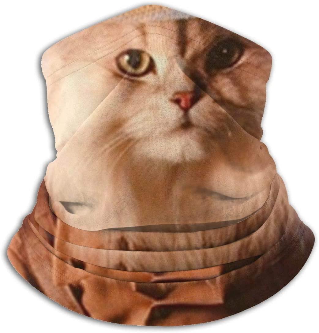 antoipyns Safari Cat Cute Funny Kittens Animal Art Print Unisex Face Balaclava Mask Scarf Anti Dust Headband Neck Gaiter Cover Scarf Bandana