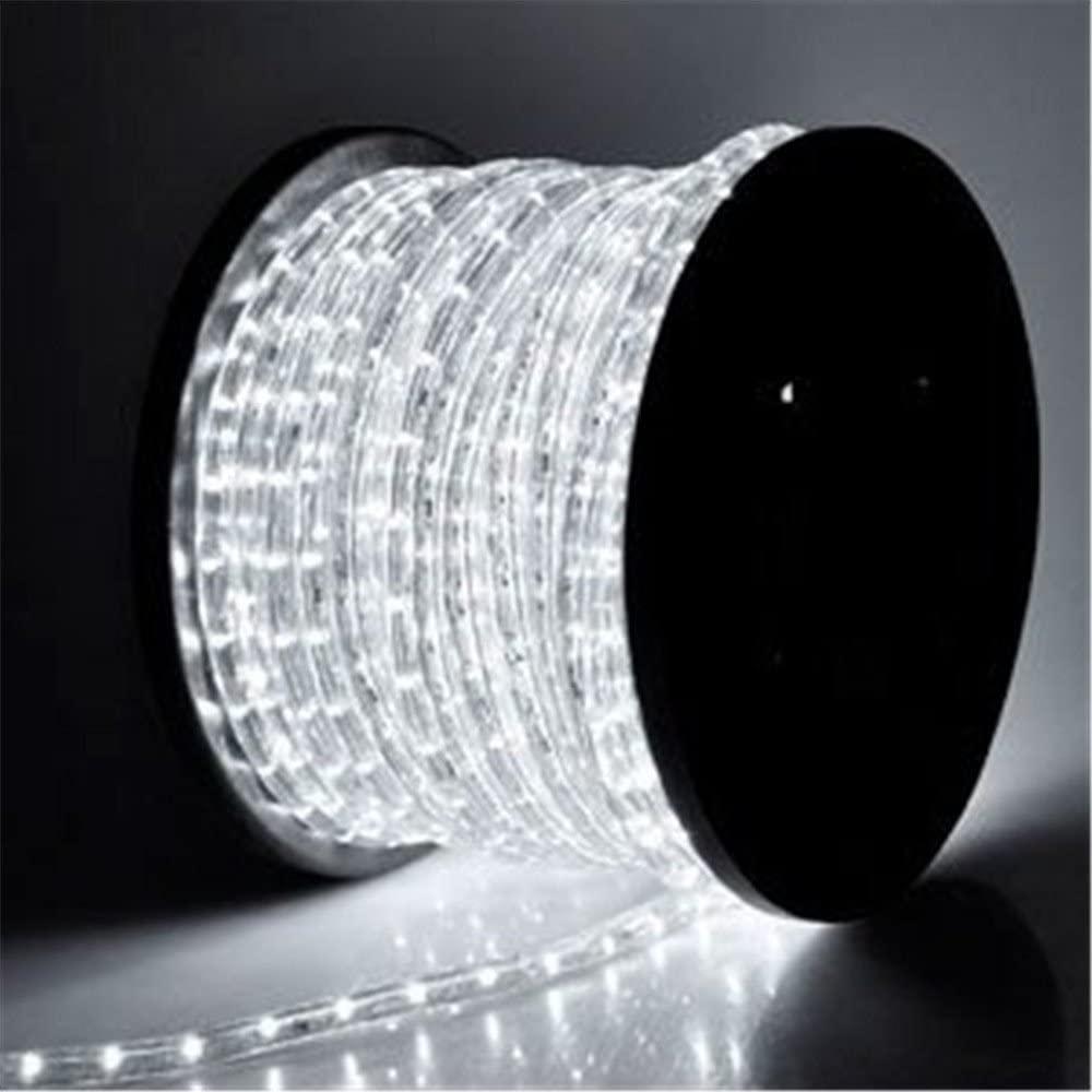 PYSICAL 110V 2-Wire Waterproof LED Rope Light Kit for Background Lighting,Decorative Lighting,Outdoor Decorative Lighting,Christmas Lighting,Trees,Bridges,Eaves … (100ft, White)