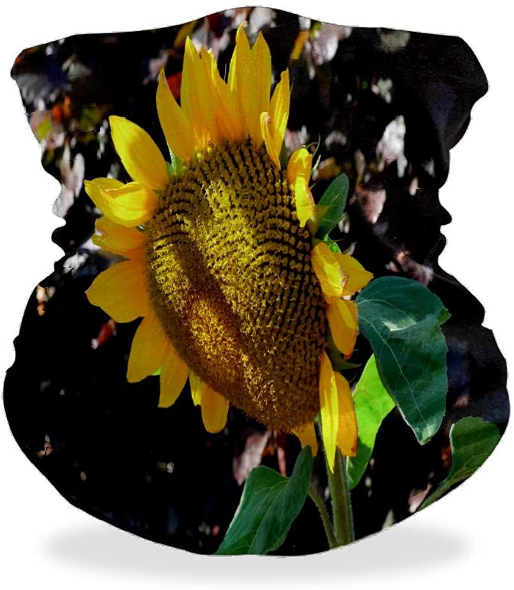 Sunflower Bloom Late Summer Unisex Mouth Mask Bandanas Face Fover Nose Scarf Mask Balaclavas Headbands Hairband Neck Gaiter for Running Shopping Walking Motorcycling Sports Against UV Light Mask