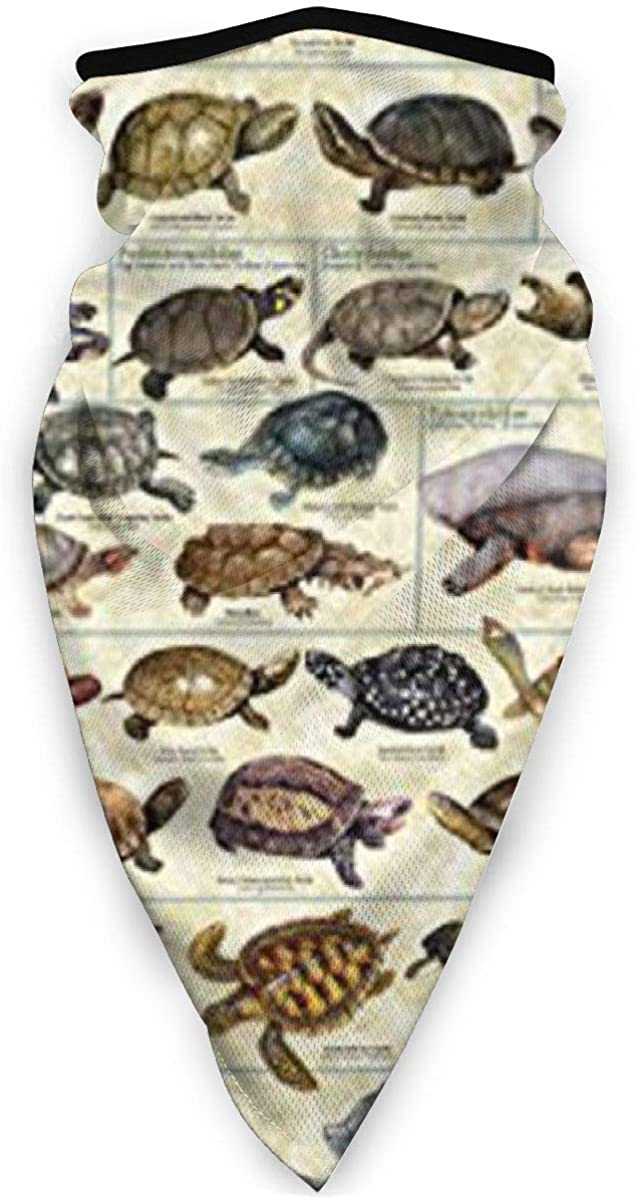 Turtles an Tortoises Face Shield - Multipurpose Neck Gaiter, Unisex Windproof Sports Mask Outdoor Scarf Neck Warmer Bandana Balaclava Headwear