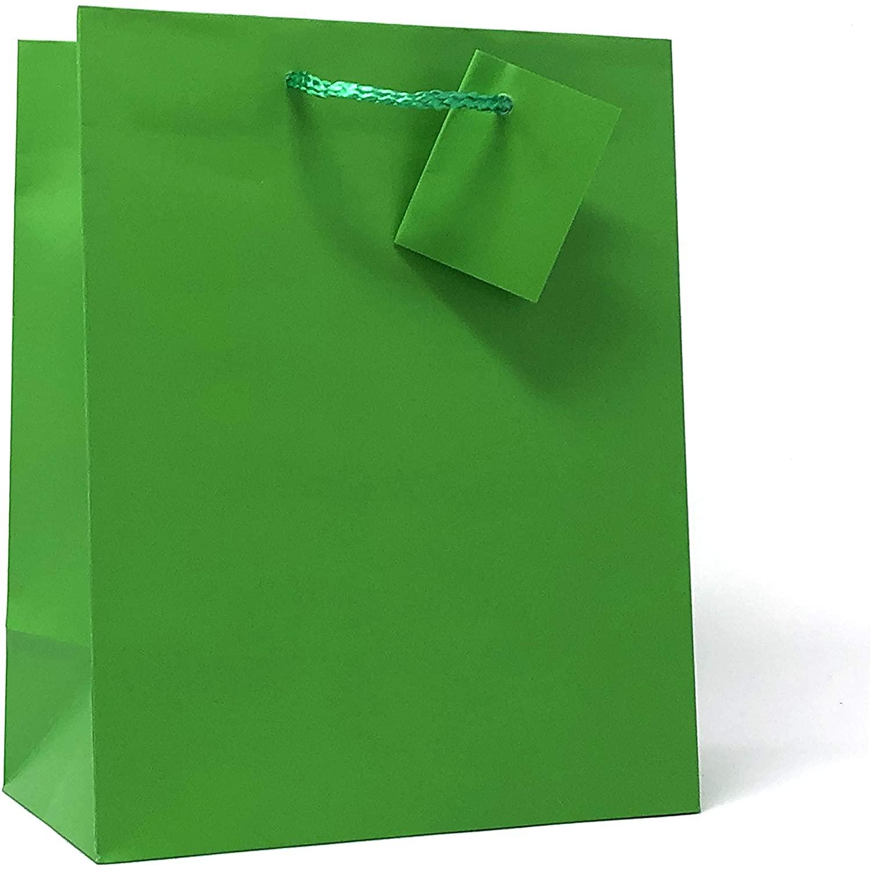 Allgala 12PK Value Premium Solid Color Paper Gift Bags (09