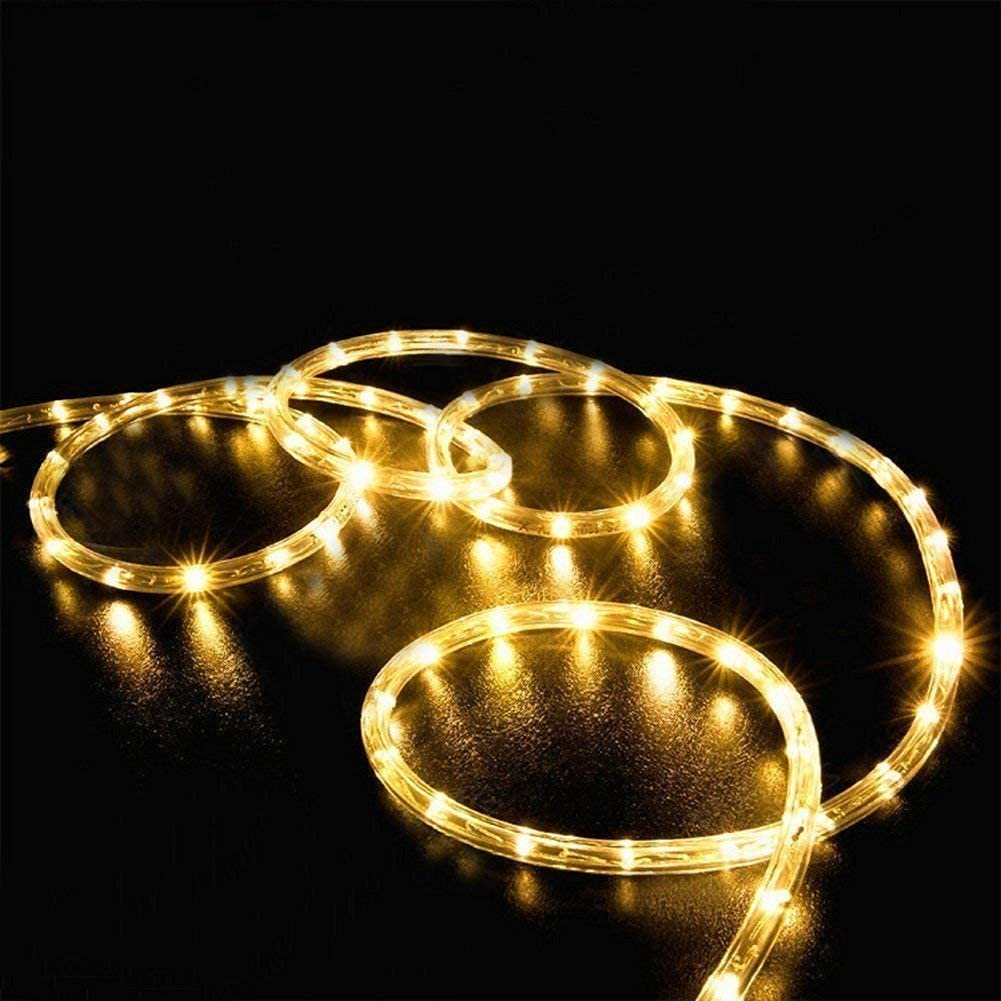 EONLYX LED Rope Lights Battery String Lights, 10M/33ft 100 LED Dimmable Rope Lights with Remote 8 Mode Waterproof for Garden Patio Party Christmas Outdoor Decoration (Warm White)
