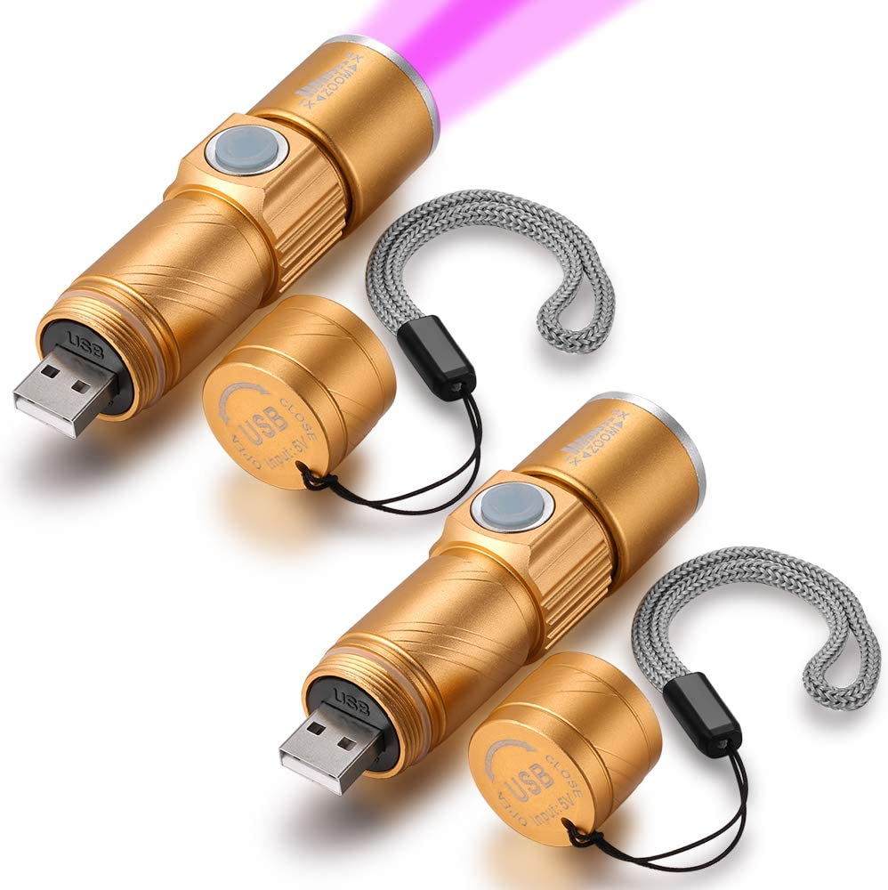 Blacklight Flashlights USB Rechargeable Portable 395nm Led Flashlight Mini Handheld Torch Black Light Detector for Dog Urine, Pet Stains (395nm UV USB Flashlight 2 PACK-Gold)