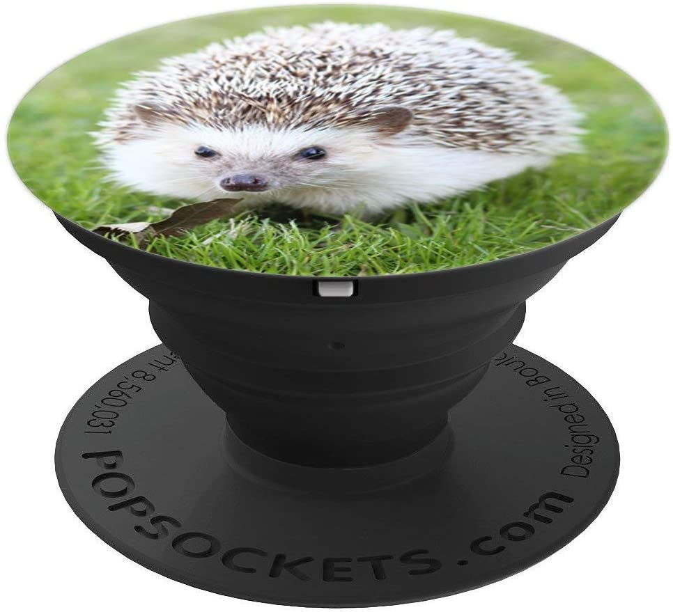Hedgehog on Grass Cute Animal PopSockets Grip and Stand for Phones and Tablets