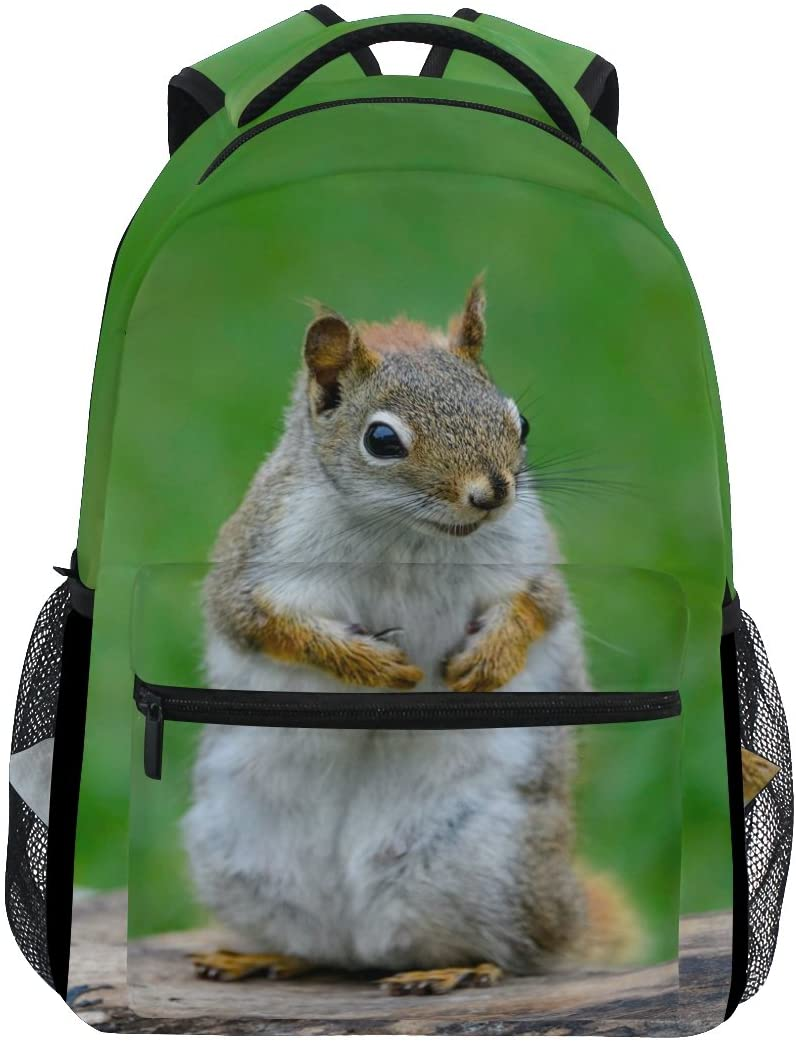 WXLIFE Animal American Red Squirrel Backpack Travel School Shoulder Bag for Kids Boys Girls Women Men