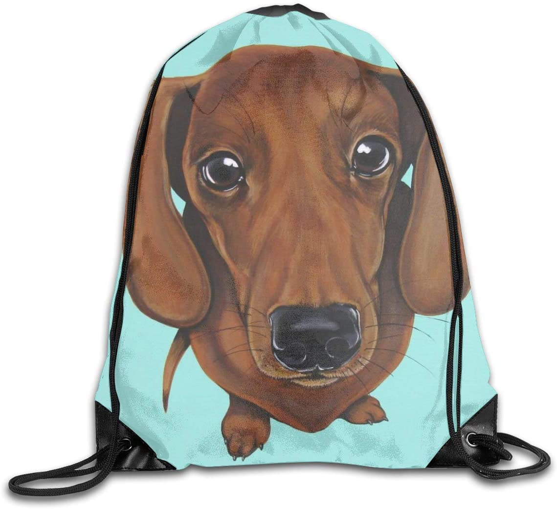 Dachshund Dog Mint Green Drawstring Sports Backpack Gym Yoga Sackpack String Bag Travel Storage Sack For Women And Men Suitable For School Swim Running Beach Outdoor