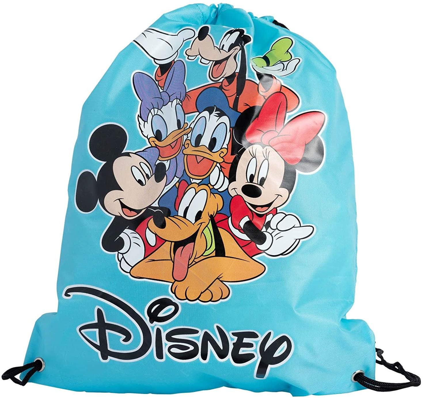 Disney Tote 15